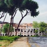 Veduta del Colosseo dal Palatino
